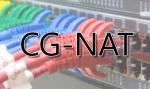 CG-NAT-0